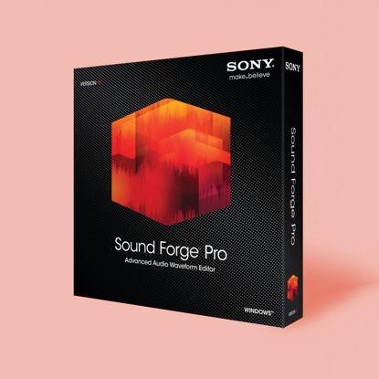 تصویر از Sound Forge Pro 11 (recurring)